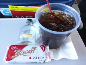 Delta Inflight Survival Kit